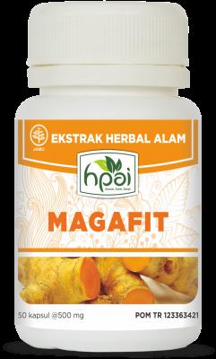 obat-herbal-asam-lambung