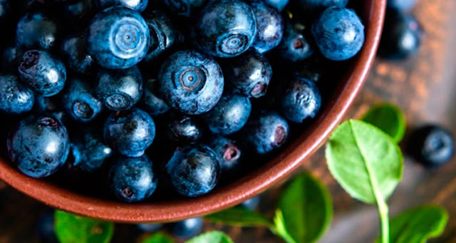 5 Top Foods to Fight Cancer