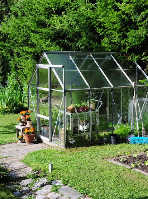 kasvihuone puutarha piha