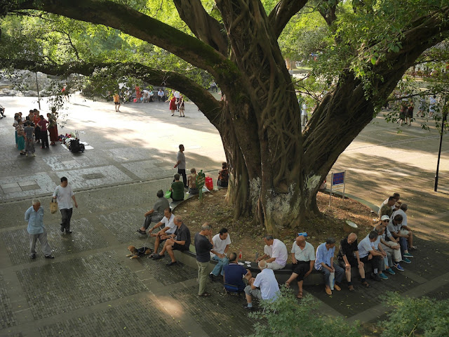People underneath a large tree at Ganzhou Park in Ganzhou