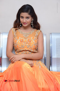 Telugu Actress Aarti Stills in Long Dress at Plus One ( 1) Audio Launch  0064.jpg