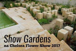 relacja z chelsea flower show 2017