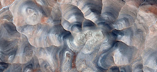 Tribute to Picasso, mountain contours becoming tortoiseshell, abstract landscapes of deserts of Africa from the air