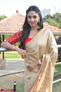 Angana Roy in Silk Saree at Teaching Tree Carnival .xyz 014.JPG
