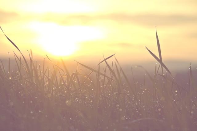 goldandgreen-dinacharya-ayurveda-routine-matin-vie-santé-reveil