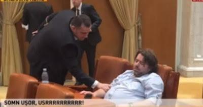 cine este mihai gotiu, senatorul prins dormind de doua ori in prlament