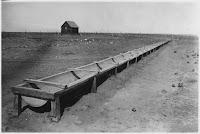 A trough