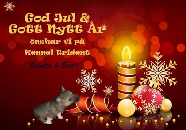 julhälsningar gratis