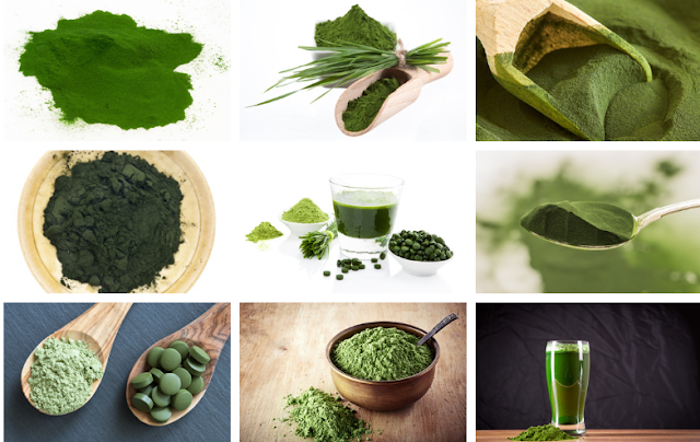 Health Benefits of Drinking Chlorella Juice Every Day