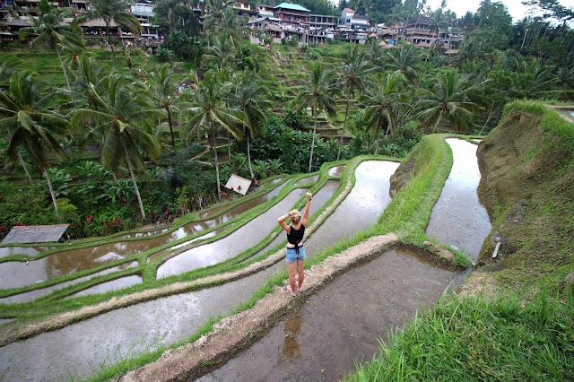 Riziere Tegalalang Bali