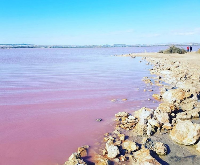 Pink salt lake at Torrevieja
