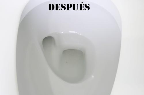 Cómo limpiar el sarro del inodoro, después