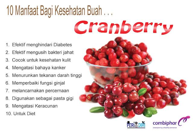 buah cranberry berkhasiat mengatasi anyang-anyangan