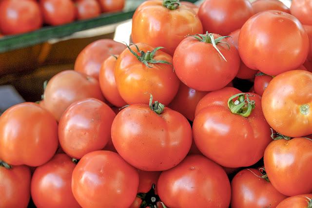 Red Tomato - solanum lycopersicum