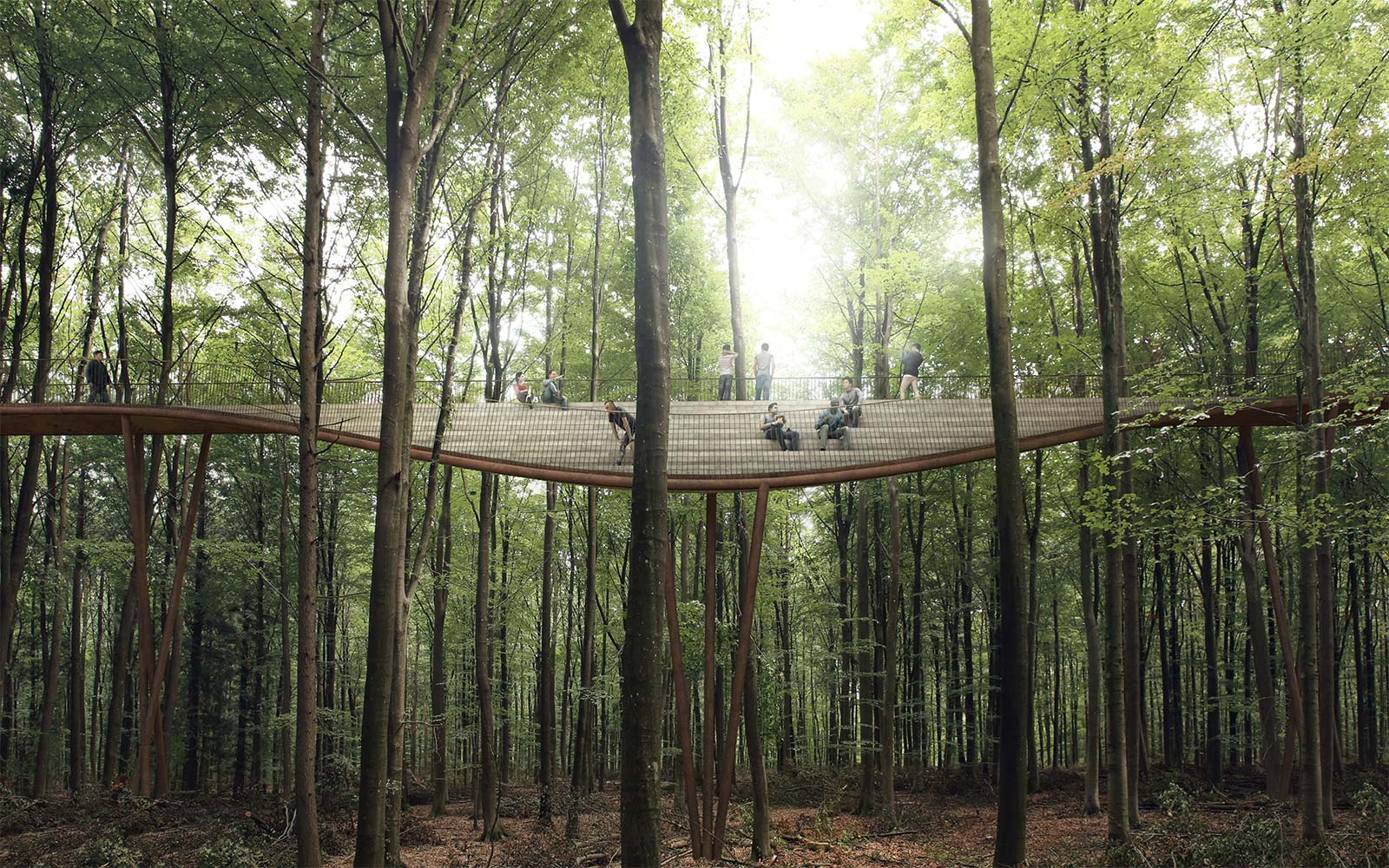 Massive Spiral Path Allows People To Walk Above The Treetops In Denmark