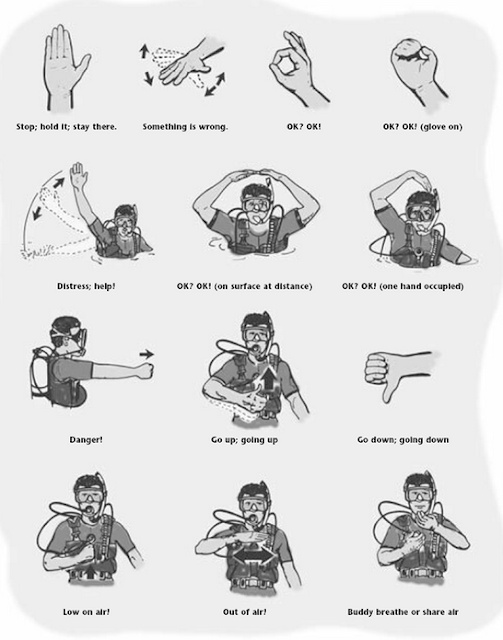 photo about Free Printable Church Usher Hand Signals referred to as Usher Hand Indicator Guideline
