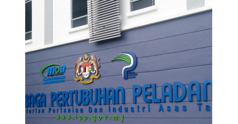 Jawatan Kosong di Lembaga Pertubuhan Peladang LPP