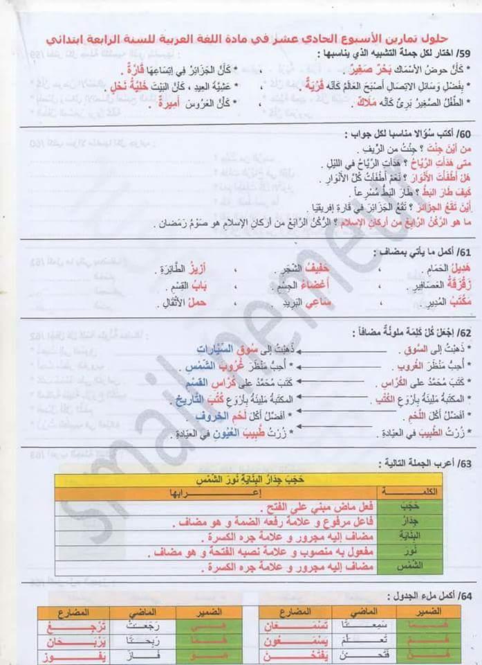 كراسة تمارين اللغة العربية مع الحلول للمرحلة الابتدائية