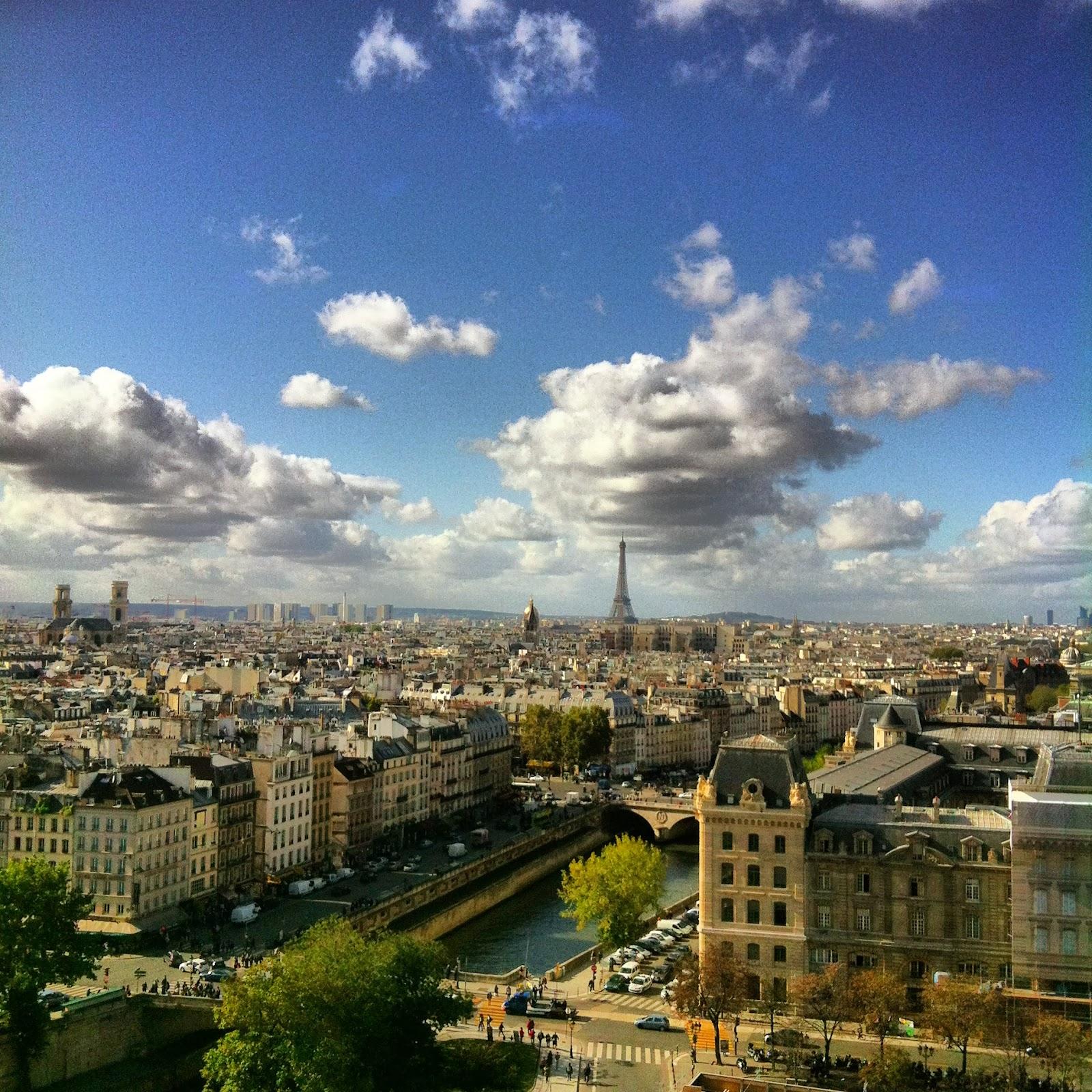 Vistas del Sena desde Notre Dame, Paris