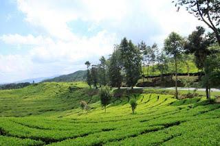 Tempat Tempat Percutian (Pelancongan) Menarik Di Bandung