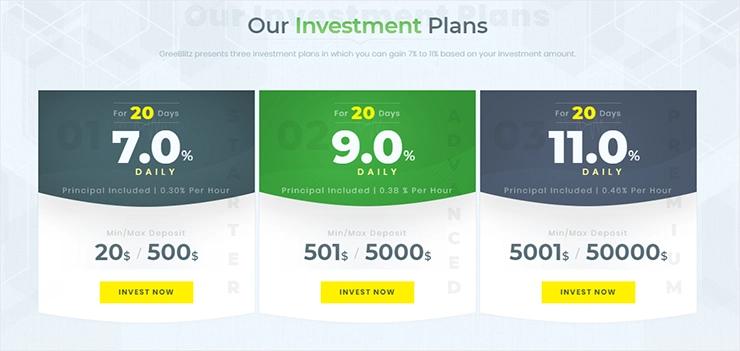Инвестиционные планы Green Blitz