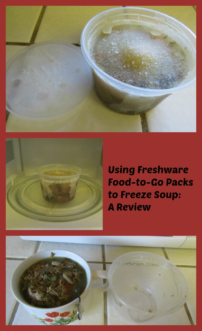 My Experience Using Freshware Food-to-Go Packs to Freeze Soup: A Review