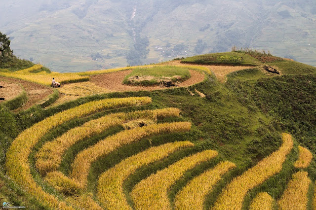 Sapa - great destination to avoid hot summer 2