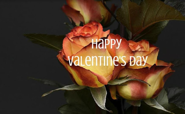 valentines-day-facts-and-history