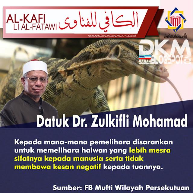Jawapan, Mufti, WPKL, isu biawak, haiwan ternakan