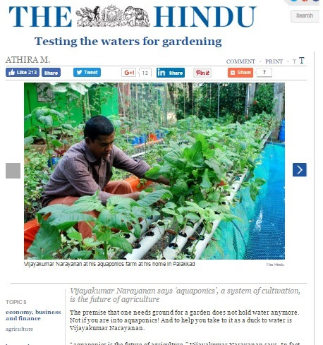 NARDC Aquaponics News: The Hindu, Testing the Waters for Gardening