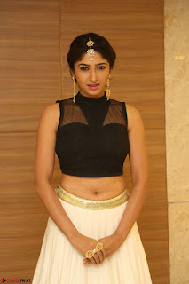 Roshni Prakash in a Sleeveless Crop Top and Long Cream Ethnic Skirt 094.JPG