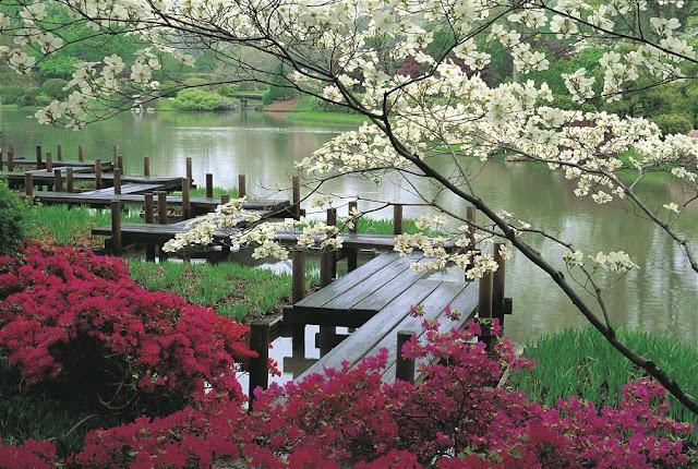 Como é o Jardim Japonês