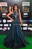Shriya Saran in Beautiful Transparent Dark Gown IIFA Utsavam Awards 2017 076.JPG