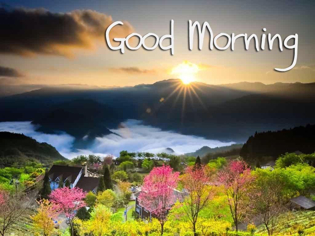best good morning hd wallpapers, download good morning desktop