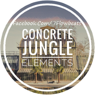 Download Concrete Jungle Elements (WAV & Kontakt Format)