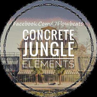 Download Concrete Jungle Elements (WAV & Kontakt Format)