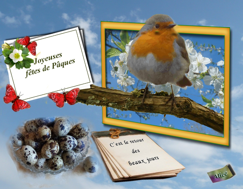 Le jardin d 39 alice saint p reuse - Vive le jardin st lo ...