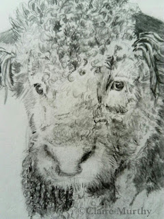 farm animal graphite sketch