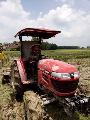 Lagi, Menteri Pertanian Bakal Panen di OKI