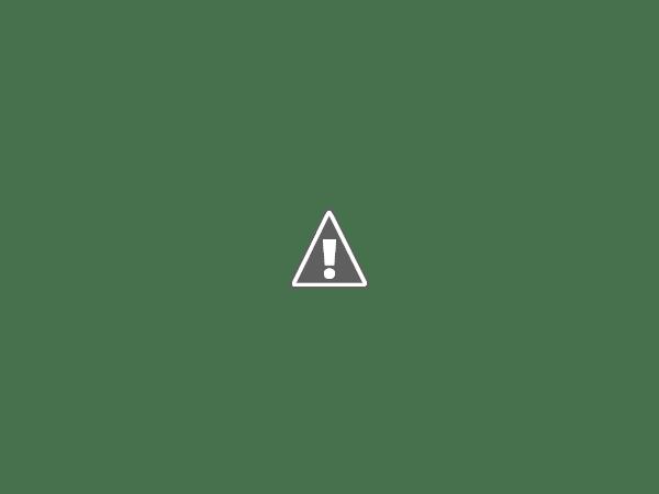 Une brosse nettoyante pour moins de 20€ !