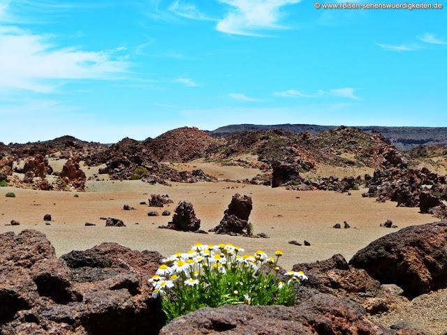 Teneriffa Teide Plateau mit hellem Gestein