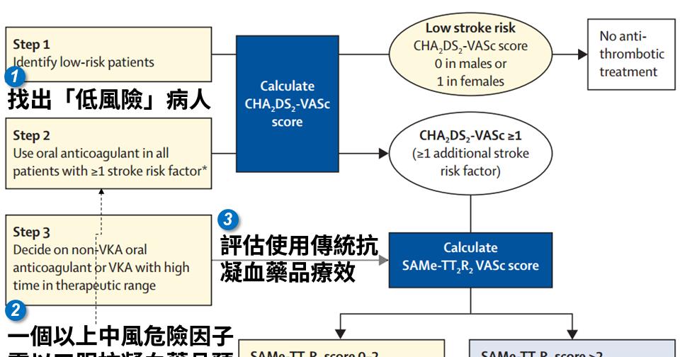 [臨床藥學] 心房顫動預防中風最新流程圖 (Stroke Prevention in New-Diagnosed Atrial Fibrillation) - NEJS