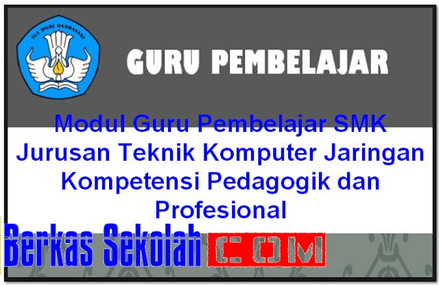 Modul Guru Pembelajar SMK Jurusan Teknik Komputer Jaringan Kompetensi Pedagogik dan Profesional