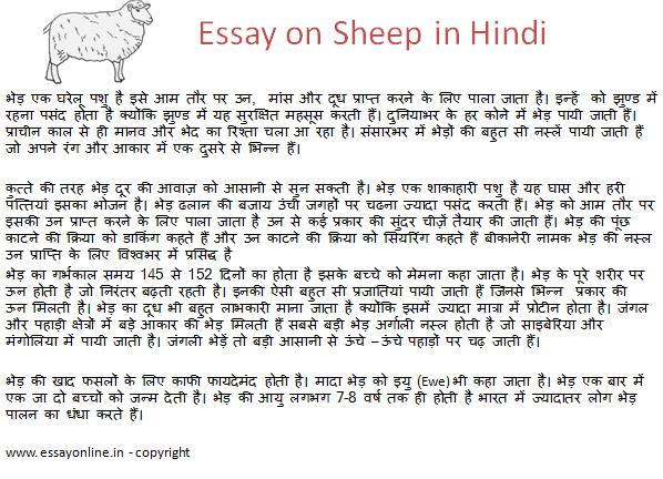 Essay on Sheep in Hindi
