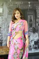 Angela Krislinzki Rogue Movie Fame Telugu Actress in Saree Backless Choli 062.JPG