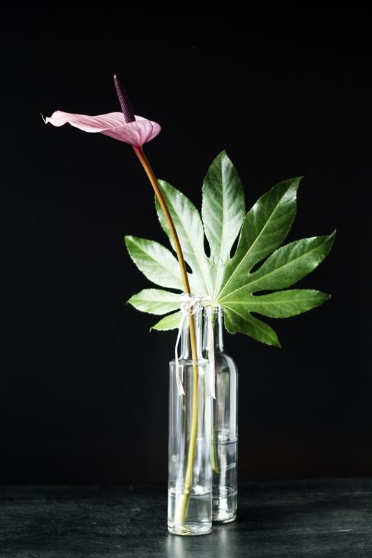 Blog + Fotografie by it's me! - Anthurie und Blattgrün in Wasserflaschen