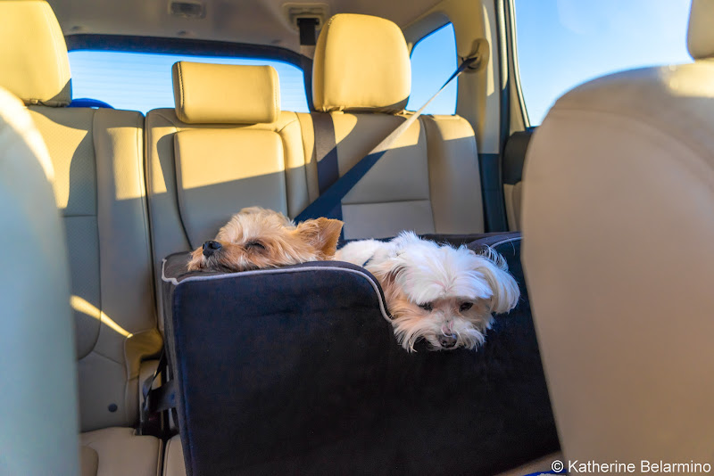 2016 Mitsubishi Outlander SEL S-AWC Interior Things to Do in Mammoth in Summer