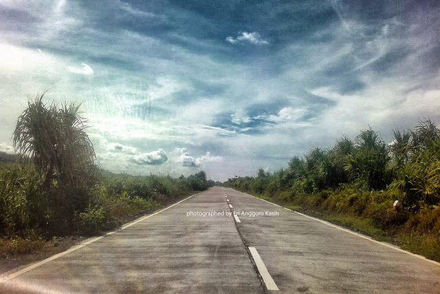 Jalan Lintas Selatan antara Cipatujah-Pangandaran dengan konstruksi beton.