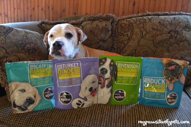 Treat Your Pooch to NEW Petcurean SPIKE Dog Treats