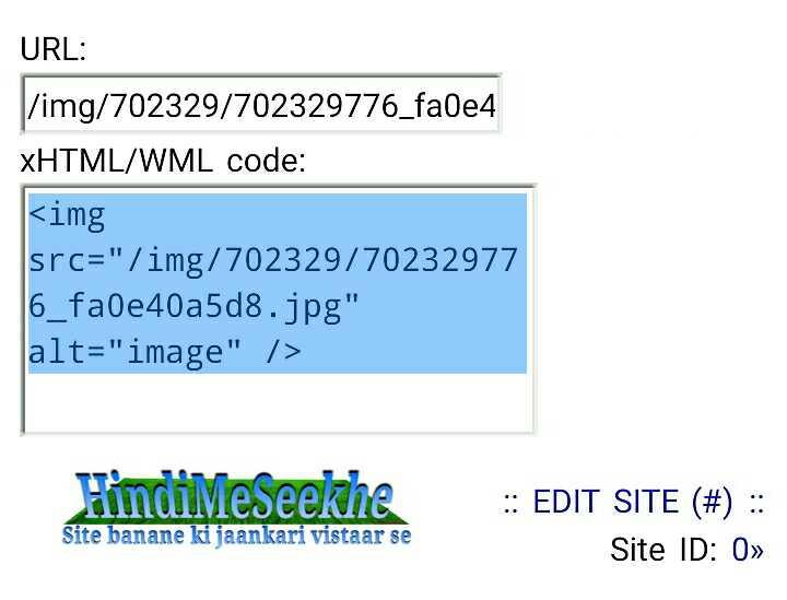 wapka-website-icon-image-url